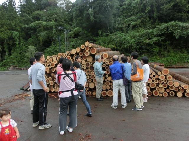 高知県梼原町森林組合にて木材の見学 工務店ソーラーコムの伐採ツアーの写真