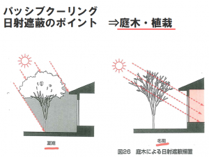 パッシブクーリング 庭木・植栽