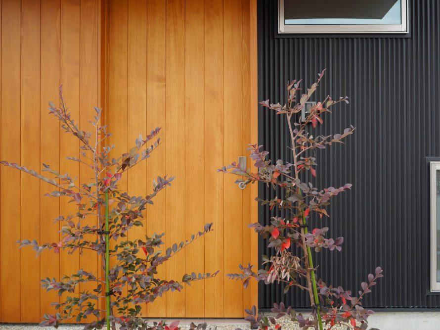 玄関にも木を使う